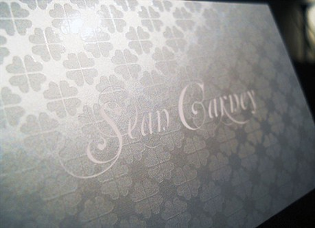 Metallic Silver Cards business card