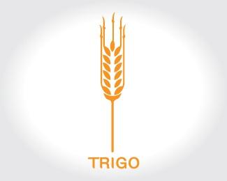 logo,wheat,cereal,zeckua,trigo logo