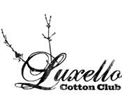 Luxello Cotton Club Option 2