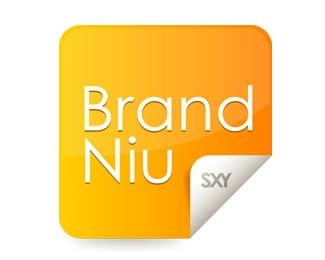 design,branding,logos,brandniu logo
