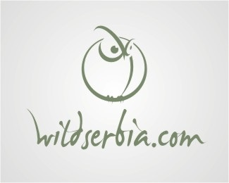 animal,bird,eyes,owl logo