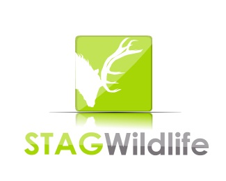 life,deer,wild,stag logo