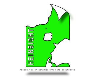 heinsight logo