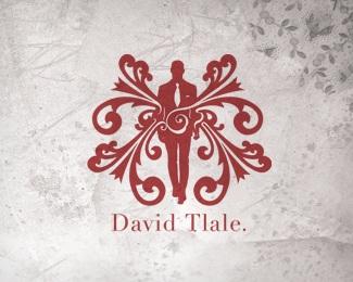 david,fashion logo