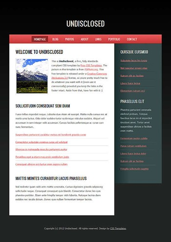 blog,business website template