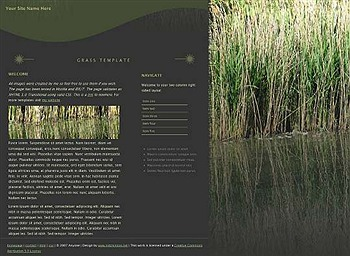 business,corporate,nature website template