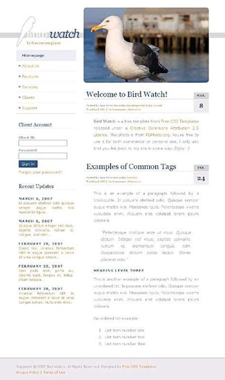 animals,birds website template