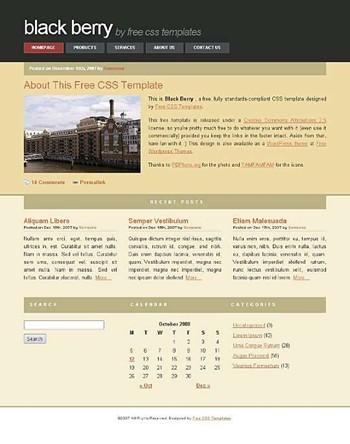 building,stone website template