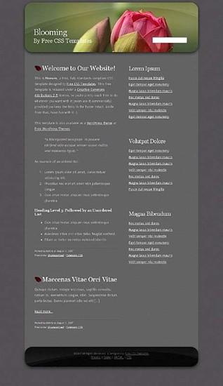 flower,rose website template