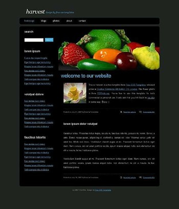 apple,fruits,lemon,strawberry website template