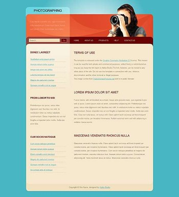 business,corporate,photography website template