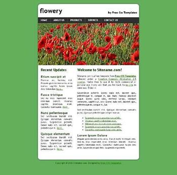 daisies,flower website template