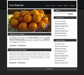 bowl,lemon website template