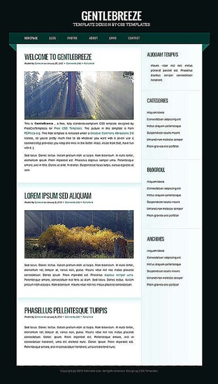 blog,business,corporate,personal website template