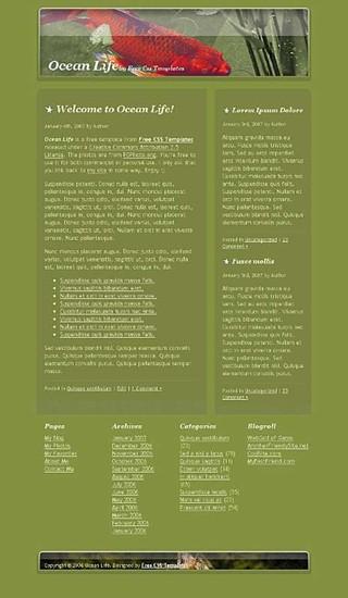 aquatic,fish,golden website template