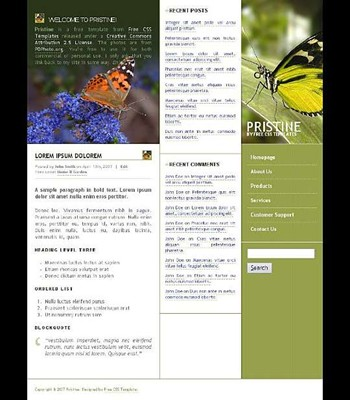 buds,butterflies,flower,leaves,nature website template