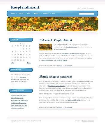 flowers,garden,nature website template