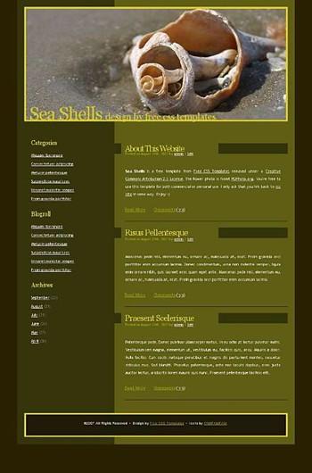 sand,shells,shore website template