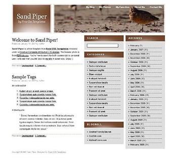 beach,bird,sand website template