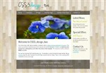CSS 3 Design Two